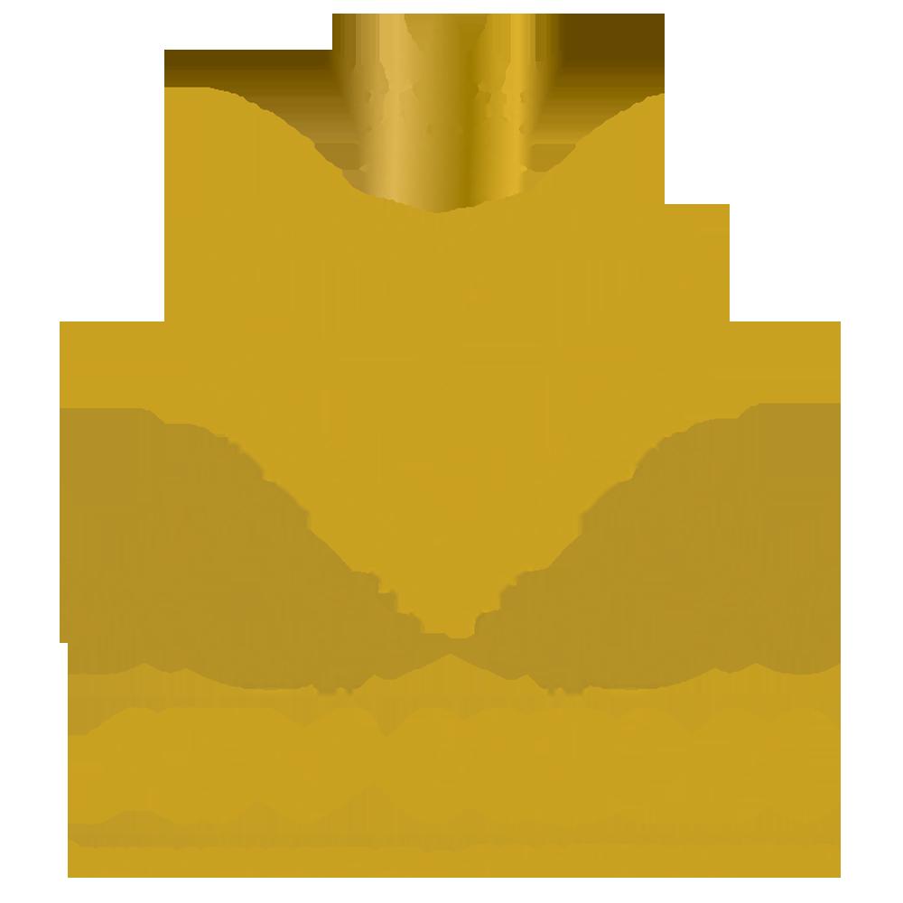 Videogalerie Videogalerie logo atv